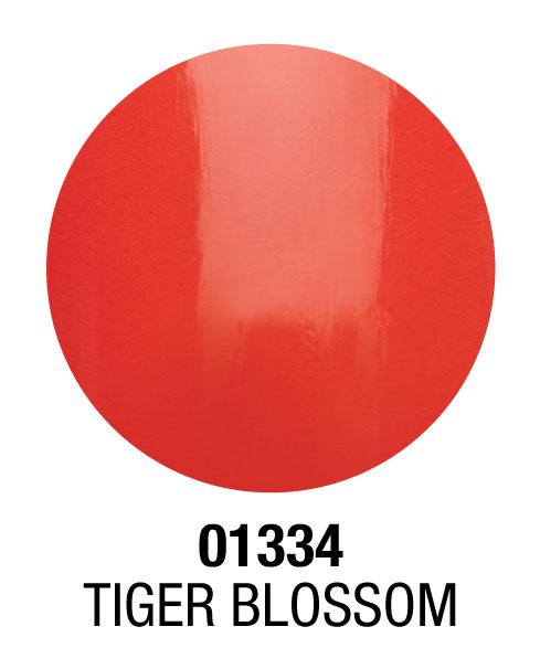 1334-tiger-blossum-b.jpg